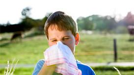 什么是幼儿急疹?