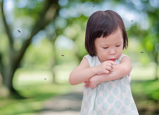 孩子被蚊子咬了很多包?又红又肿全搞定!
