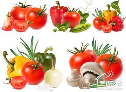 蔬菜也是 宝宝饮食的一个重要组成部分,在宝宝的成长过程中扮演着非常