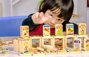 木贵婴 MGY0015 100片水果动物多米诺