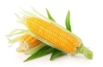孕妇可以吃玉米棒吗 孕妇吃玉米有什么好处图片