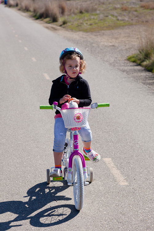 自行车在公园里.jpg