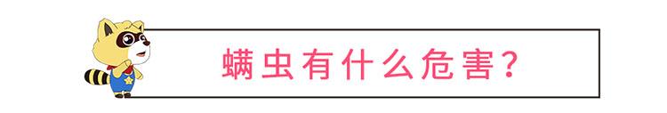 螨虫_05.jpg